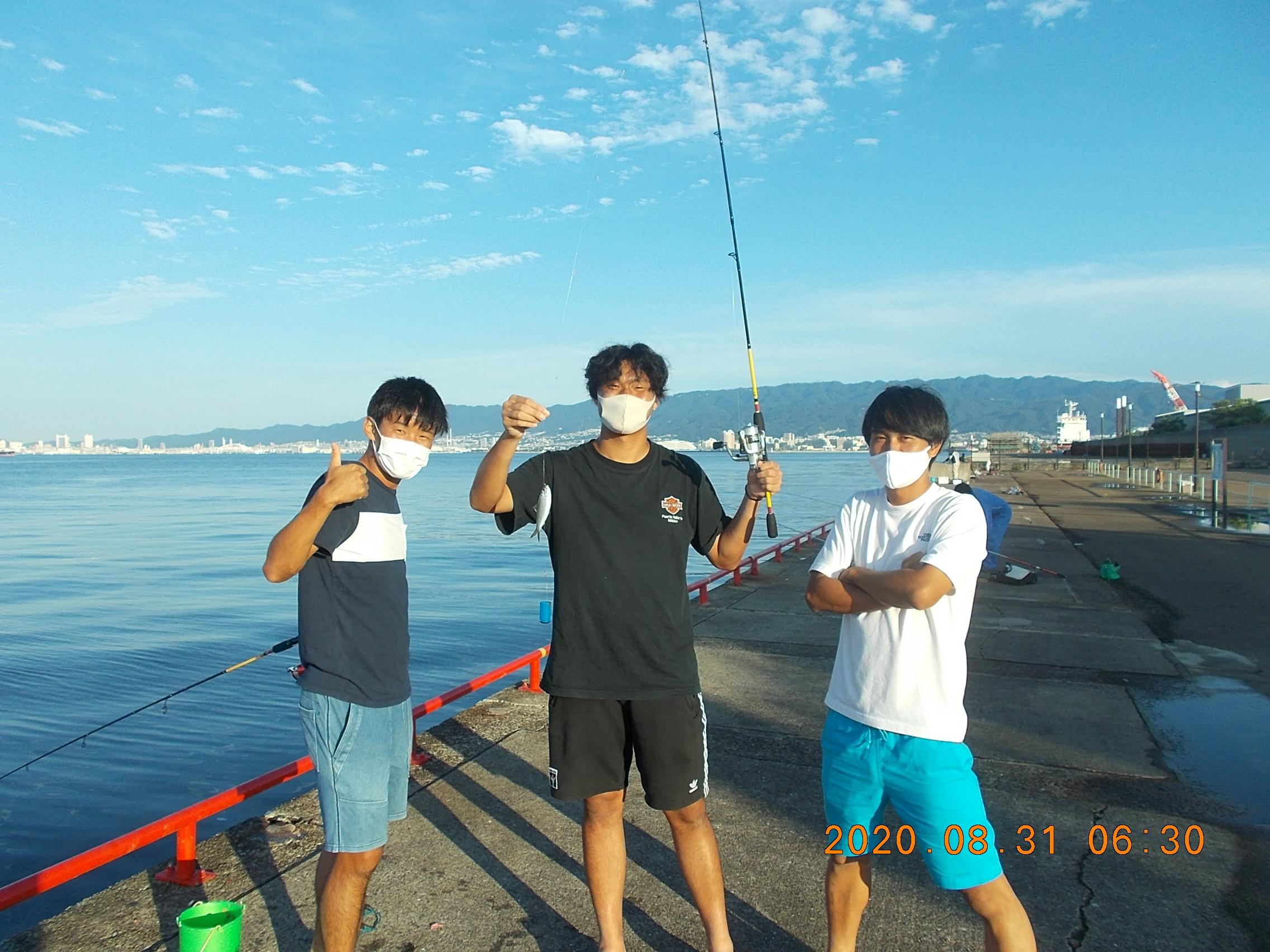 浜 公園 釣り 鳴尾 釣果 海